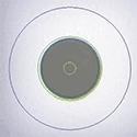 Mikroskoobid